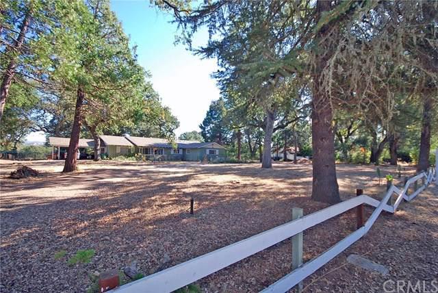 7125 Carmelita Avenue, Atascadero, CA 93422 (#NS19259848) :: RE/MAX Parkside Real Estate