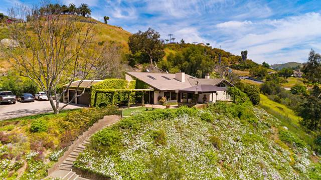 1138 Little Gopher Canyon Road, Vista, CA 92084 (#219033484PS) :: The Houston Team | Compass