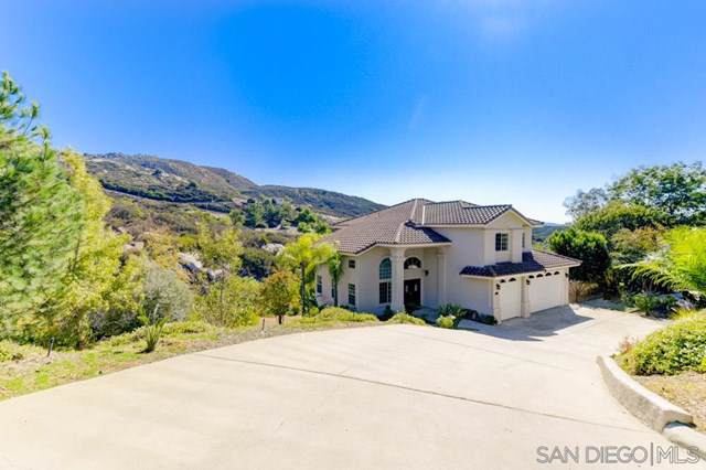 3253 Armagosa Way, Jamul, CA 91935 (#190060915) :: Steele Canyon Realty