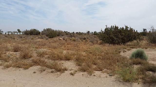 0 Kittering Road, Hesperia, CA 92345 (#519565) :: The Brad Korb Real Estate Group