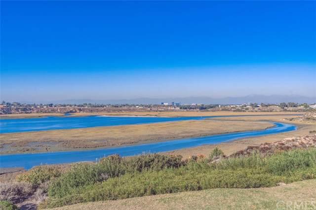 2167 Vista Entrada, Newport Beach, CA 92660 (#NP19262375) :: Doherty Real Estate Group