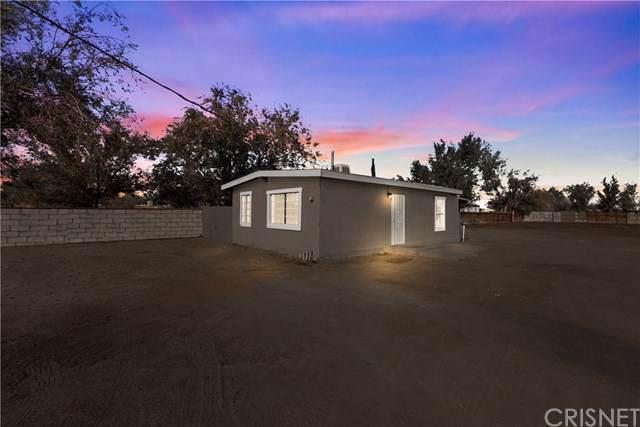 9177 E Avenue S10, Littlerock, CA 93543 (#SR19262448) :: RE/MAX Empire Properties