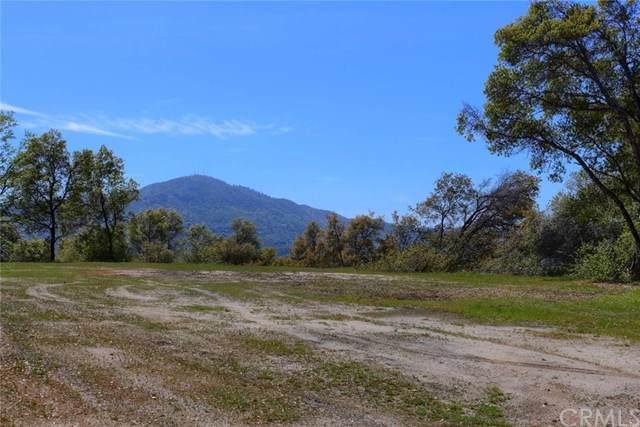 0-6.23AC Woodside Lane, Oakhurst, CA  (#FR19263162) :: Fred Sed Group