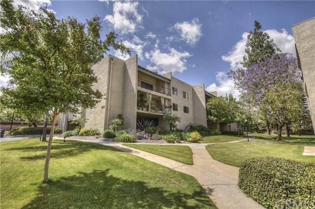 242 E Fern Avenue #206, Redlands, CA 92373 (#EV19262683) :: J1 Realty Group