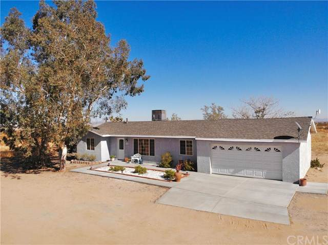 1595 Alta Avenue, Landers, CA 92285 (#JT19263425) :: Steele Canyon Realty