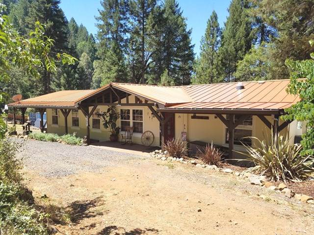 15065 Doe Mill Road, Magalia, CA 95954 (#SN19263437) :: Steele Canyon Realty