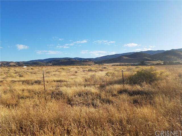 0 Vac/265Th Stw/Vic Avenue D, Neenach, CA 93536 (#SR19263495) :: Steele Canyon Realty
