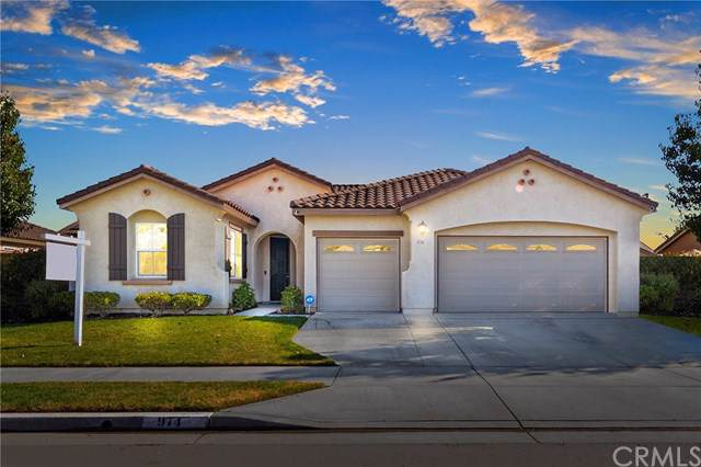 974 Saw Tooth Lane, Hemet, CA 92545 (#SW19263574) :: California Realty Experts