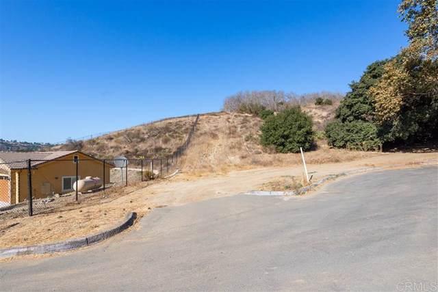 3492 Live Oak Creek Cir, Fallbrook, CA 92028 (#190060718) :: California Realty Experts