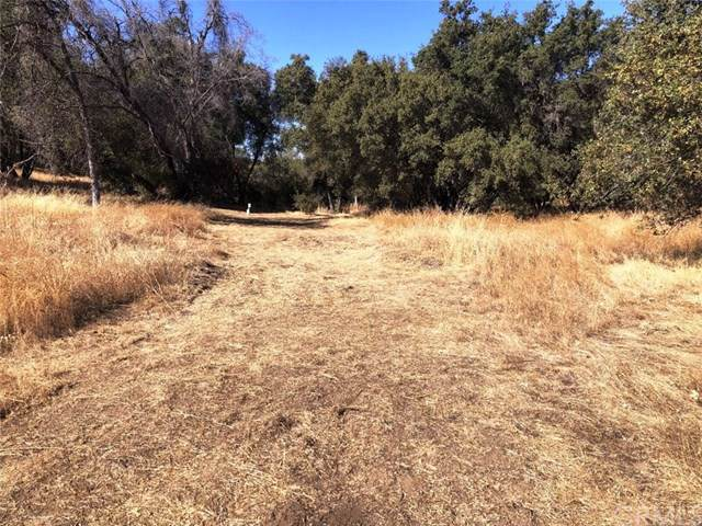 0-Lot 16 Rolling Meadows Court, Coarsegold, CA 93614 (#FR19264007) :: Millman Team