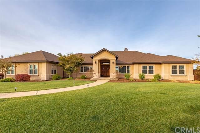 3925 Aruba Court, Chico, CA 95973 (#SN19263826) :: The Laffins Real Estate Team