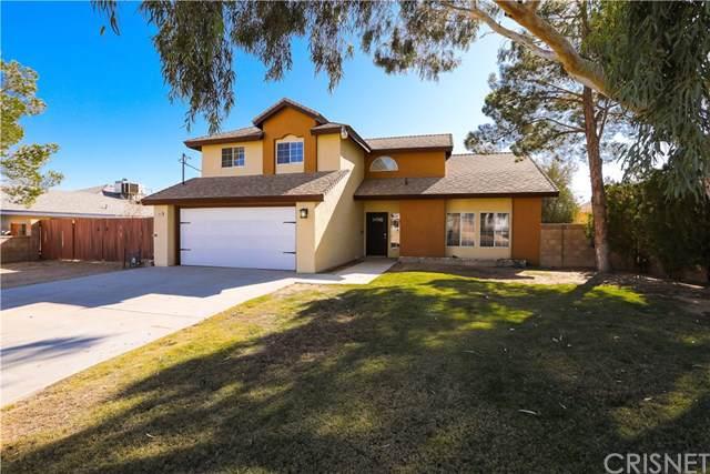 9950 Karen Avenue, California City, CA 93505 (#SR19264184) :: Faye Bashar & Associates