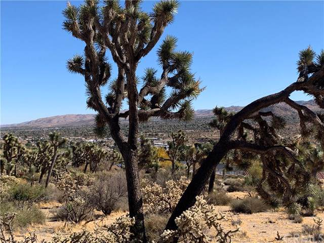 0 Munson, Yucca Valley, CA  (#JT19264515) :: The Ashley Cooper Team