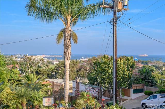 2424 S Gaffey Street #105, San Pedro, CA 90731 (#PV19264431) :: Sperry Residential Group