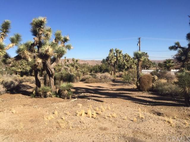 0 Free Gold Drive, Yucca Valley, CA 92284 (#JT19264819) :: Z Team OC Real Estate