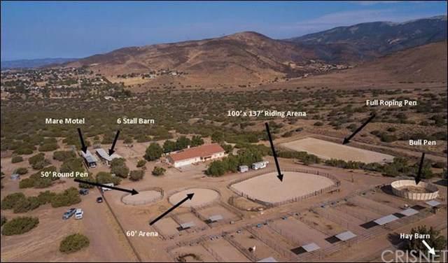 35710 Tierra Dulce Road, Agua Dulce, CA 91390 (#SR19261255) :: RE/MAX Estate Properties