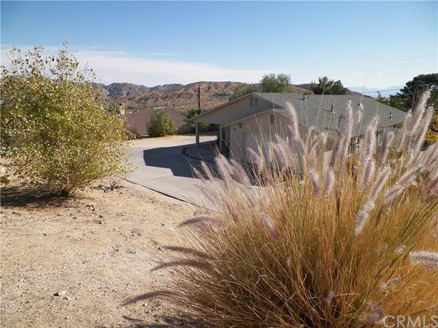 48959 Buena Vista Drive, Morongo Valley, CA 92256 (#PW19264249) :: The Marelly Group | Compass