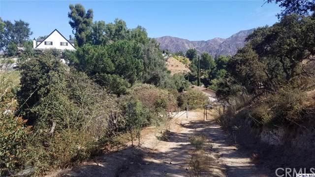 7144 Estepa Drive, Tujunga, CA 91042 (#319004523) :: Allison James Estates and Homes