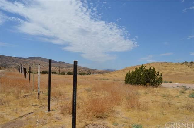 0 Vac/Vic Ranchero Rd/Blackberry, Palmdale, CA 93550 (#SR19265352) :: Legacy 15 Real Estate Brokers