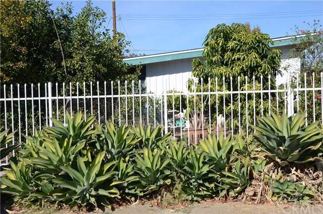 18021 Hatton Street, Reseda, CA 91335 (#PF19264542) :: eXp Realty of California Inc.