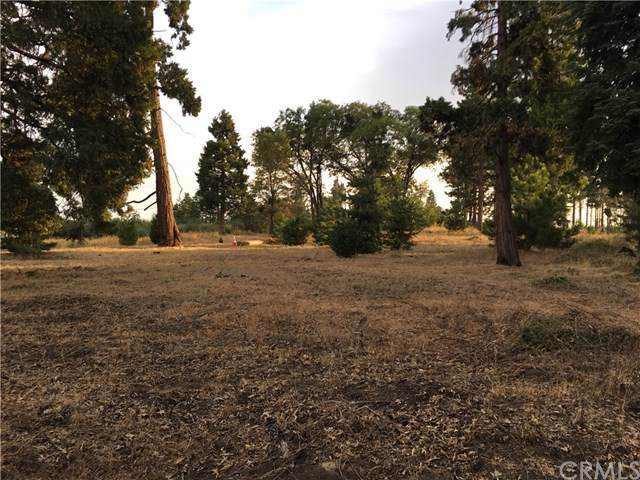 0 Old City Creek Road, Running Springs, CA 92382 (#IN19265617) :: Allison James Estates and Homes