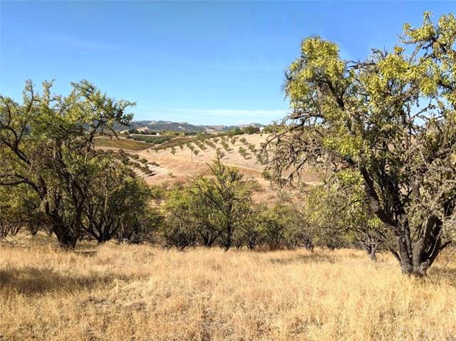 625 W West Hollow Drive, Paso Robles, CA 93446 (#NS19265016) :: RE/MAX Parkside Real Estate