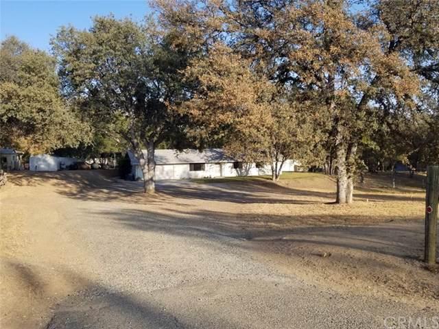 31667 Blackfoot Road, Coarsegold, CA 93614 (#FR19266077) :: RE/MAX Empire Properties