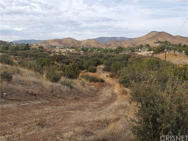 0 Vac/Bedworth Rd/Vic Green Doer, Agua Dulce, CA 91350 (#SR19266136) :: J1 Realty Group