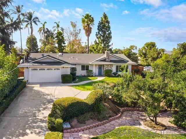 1638 Alapat Dr, Escondido, CA 92027 (#190061784) :: Legacy 15 Real Estate Brokers