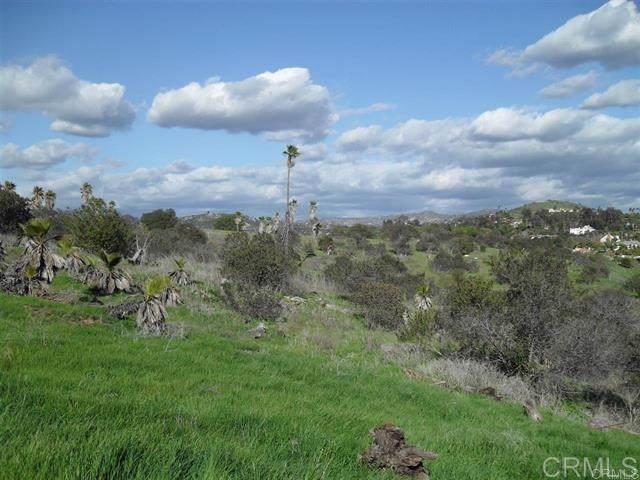 0 Peet Ln., Escondido, CA 92025 (#190061869) :: RE/MAX Empire Properties