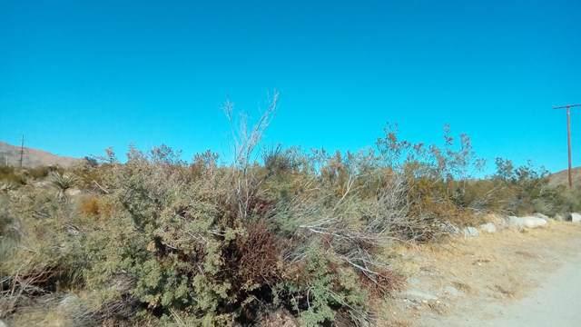 4 Twentynine Palms Highway, Morongo Valley, CA 92256 (#219034025PS) :: Sperry Residential Group