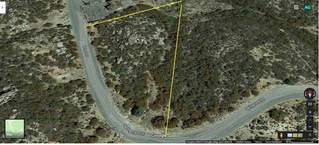 1 Springcrest Drive Drive, Mountain Center, CA 92561 (#219034026PS) :: Sperry Residential Group