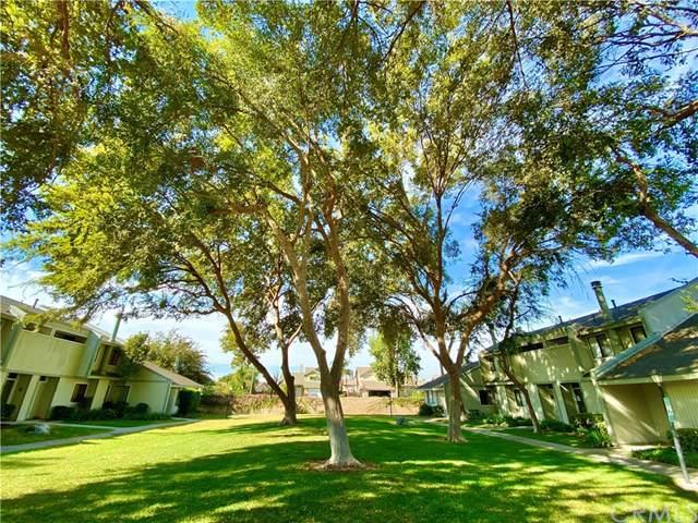 1965 Coulston Street #43, Loma Linda, CA 92354 (#CV19266616) :: Steele Canyon Realty