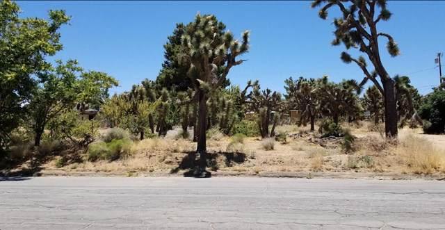55561 Santa Fe Trail, Yucca Valley, CA 92284 (#219034049DA) :: The Marelly Group | Compass