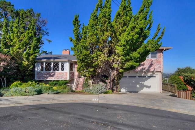 17 Coleman Court, San Carlos, CA 94070 (#ML81775782) :: Z Team OC Real Estate