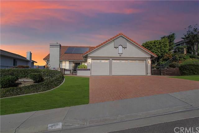 787 Calle Vallarta, San Clemente, CA 92673 (#OC19267065) :: Z Team OC Real Estate