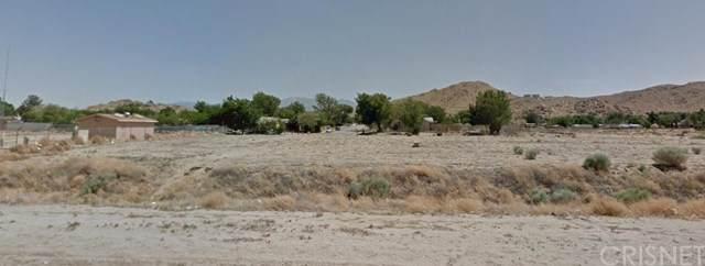 16510 Ave O, Lake Los Angeles, CA 93591 (#SR19267146) :: Powerhouse Real Estate