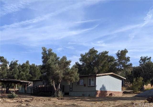 29852 Alice Lane, Nuevo/Lakeview, CA 92567 (#TR19243786) :: The Laffins Real Estate Team