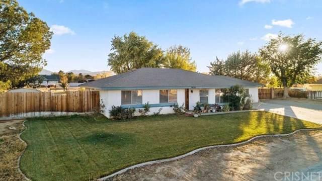 9654 E Avenue R14, Littlerock, CA 93543 (#SR19267608) :: Allison James Estates and Homes