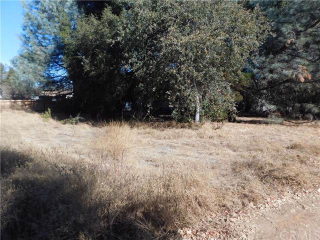 15796 23rd Avenue, Clearlake, CA 95422 (#LC19267731) :: J1 Realty Group