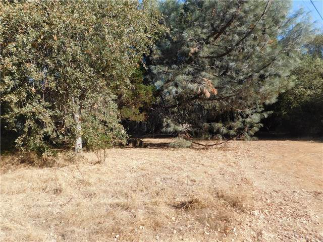 15556 23rd Avenue, Clearlake, CA 95422 (#LC19267733) :: J1 Realty Group