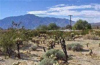 18 Santa Rosa Road, Desert Hot Springs, CA 92240 (#219034156PS) :: J1 Realty Group