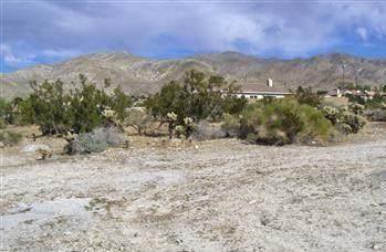 12 Santa Rosa Road, Desert Hot Springs, CA 92240 (#219034154PS) :: J1 Realty Group