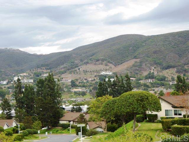 1125 Calle Del Baston, San Marcos, CA 92078 (#190062214) :: Sperry Residential Group