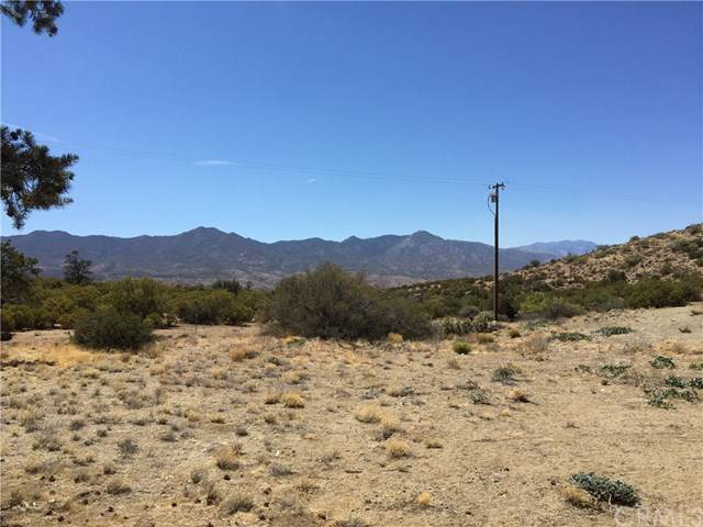 0 Palm Canyon Dr., Mountain Center, CA  (#JT19268233) :: Mainstreet Realtors®