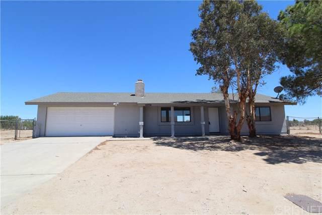 41036 156th Street E, Lake Los Angeles, CA 93535 (#SR19268210) :: Powerhouse Real Estate