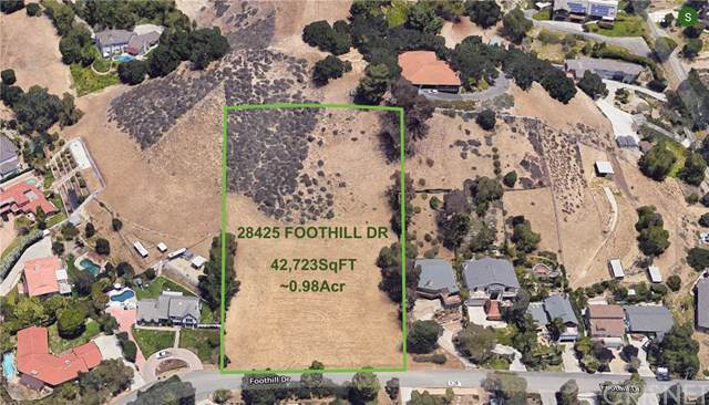 28425 Foothill Drive, Agoura Hills, CA 91301 (#SR19268677) :: Allison James Estates and Homes