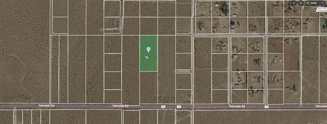 0 Begonia Vacant Land Road, Pinon Hills, CA 92372 (#519823) :: Z Team OC Real Estate