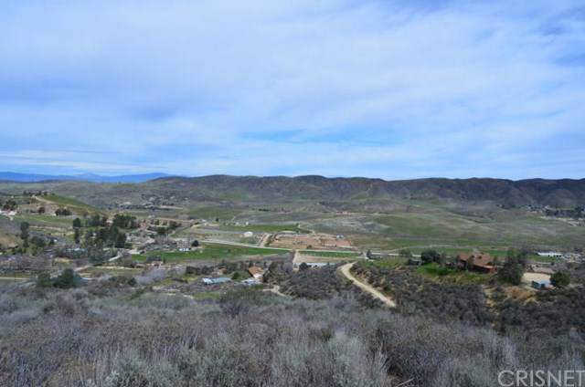 0 Vac/Vic Leona Ave/107Th Stw, Leona Valley, CA 93551 (#SR19268934) :: Z Team OC Real Estate