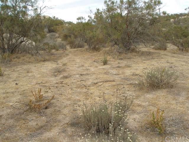 552 Saddleback Drive, Aguanga, CA 92536 (#SW19268892) :: Z Team OC Real Estate
